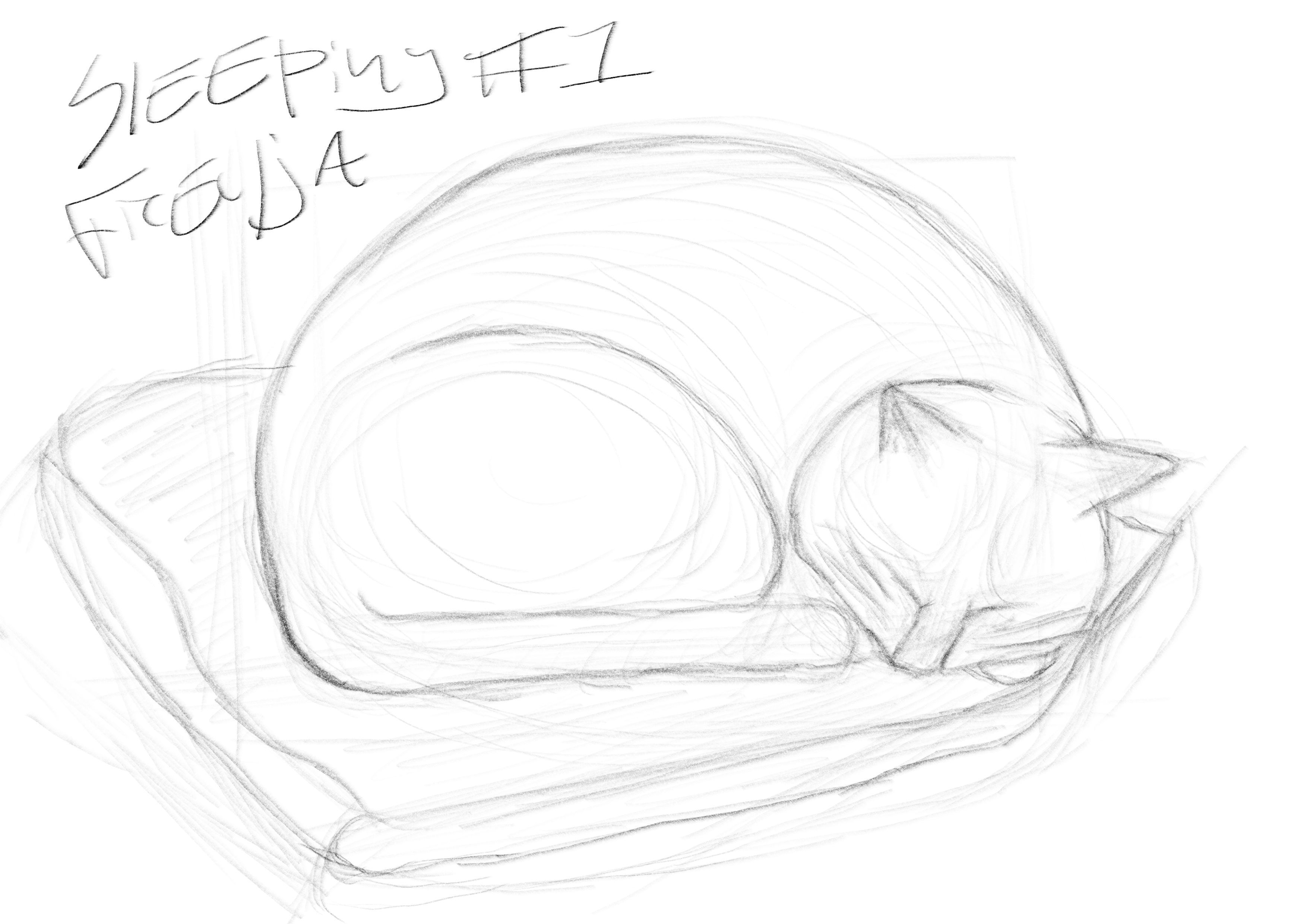 SleepingFreyja1.jpg