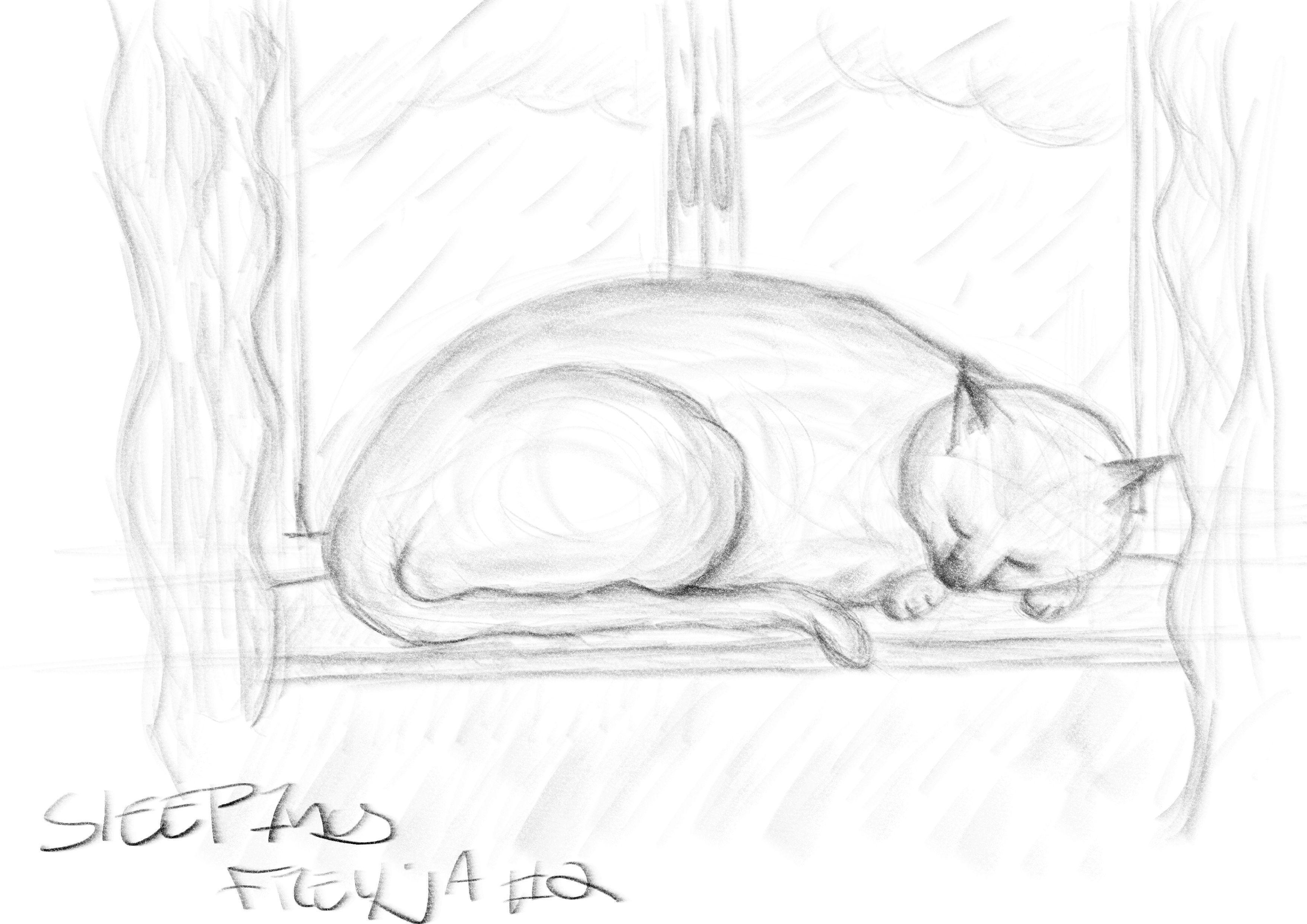 SleepingFreyja2.jpg